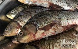 Более 400 браконьеров задержали за первый месяц лета в Днепропетровской области