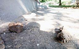 Берегите головы: в Кривом Роге куски фронтонов падают на пешеходные дорожки