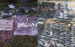 В Криворожском районе задержали браконьера, выловившего 620 карасей