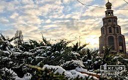 В Кривом Роге выпал первый снег (фото)