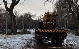 В криворожском парке, где пройдут новогодние празднования, коммунальщики обрезают деревья