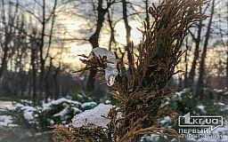 Какой будет погода в Кривом Роге 4 декабря и что сулит гороскоп в этот день