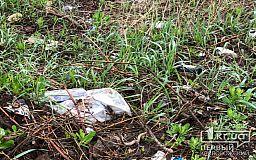 В Кривом Роге в канаве обнаружили труп мужчины