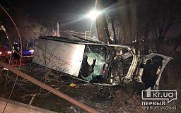В Кривом Роге авто врезалось в столб и перевернулось на бок