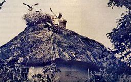 Історичний факт від водоканалу - у Кривому Розі є водопровід, якому більше 90 років