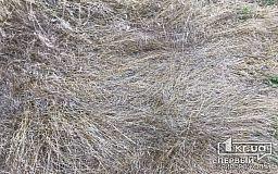 В Криворожском районе в сарае сгорело несколько тонн сена