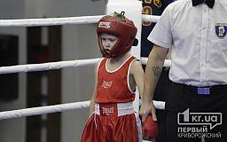 В Кривом Роге начался открытый Кубок по боксу