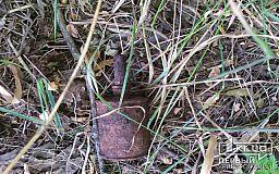 В Криворожском районе мужчина собирал металлолом, а нашел гранату