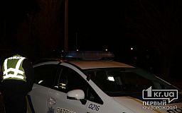 В Кривом Роге 4 411 пьяных водителей привлекли к ответственности за год