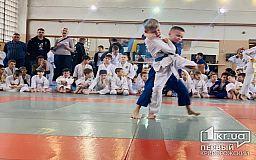 Почти 100 спортсменов поучаствовали в новогоднем турнире по дзюдо в Кривом Роге
