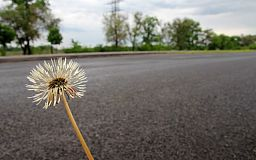 Гарантия 5 лет: впервые за полвека выполнен ремонт Криворожской трассы