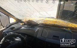 Криворожане, пострадавшие в ДТП с маршруткой, лечатся амбулаторно