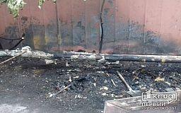 Ночью в Кривом Роге неизвестные подожгли будки бездомных собак, - свидетели