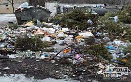 Снег сошёл, видим всю красоту, - в Кривом Роге заявили о срыве графика вывоза мусора