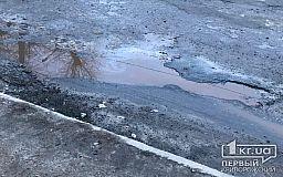 На нескольких трассах через Кривой Рог начались ремонты дорог