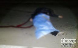В Кривом Роге легковушка сбила насмерть мужчину