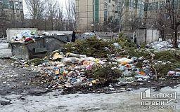 В Кривом Роге пытались разобраться, кто виноват в скоплении мусора на контейнерных площадках