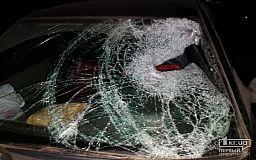 Свидетелей смертельного ДТП на трассе Кривой Рог-Кропивницкий просят обратиться в полицию