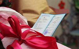Гарант Конституции предлагает стимулировать рождаемость в Украине