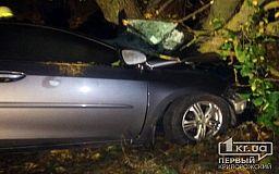 Парень погиб и пострадали две девушки в результате ДТП под Кривым Рогом (ОБНОВЛЕНО)