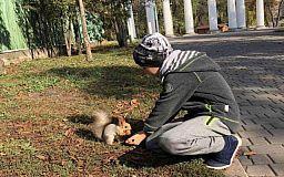 В парке имени Федора Мершавцева криворожанина укусила белка