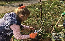 В бесхозном парке криворожане высадили деревья в память о воинах Второй мировой войны