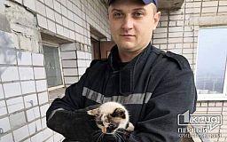 Криворожские пожарные спасли кота, застрявшего на 13-этаже дома