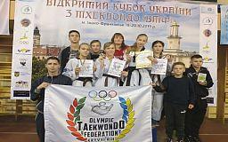 Криворожане завоевали несколько медалей на чемпионате по тхэквондо