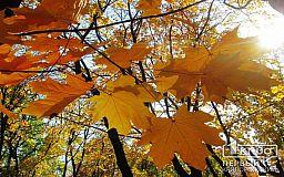 Какой будет погода в Кривом Роге 24 октября и что советуют астрологи