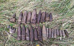 В Криворожском районе обнаружено 28 взрывоопасных предметов