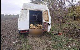 Криворожанин вырубил 29 акаций и пытался увезти их на грузовике