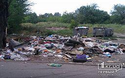 Видишь кучу- делай больше, - криворожане возмущены горами мусора на контейнерной площадке