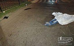 18+ В Кривом Роге на «тысячке» снова в ДТП погиб пешеход