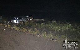 Ночью на въезде в Кривой Рог случилось смертельное ДТП, полиция ищет очевидцев