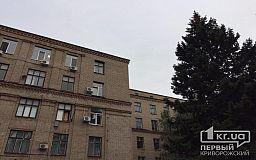 Петицию с требованием не закрывать взрослое отделение в 8-й городской больнице поддержала 1000 криворожан
