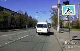 ДТП в Кривом Роге: маршрутка сбила пешехода