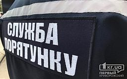Спасатели обезвредили снаряд, найденный в Криворожском районе
