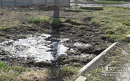 Из-за регулярных порывов водопровода в одном из дворов в Кривом Роге появилось болото