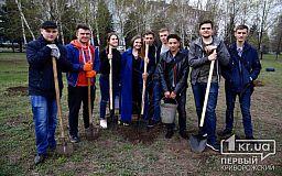Криворожане высадили деревья в сквере памяти имени Кузьмы Скрябина