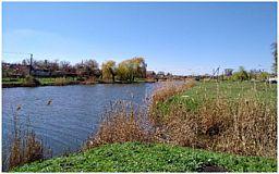 В Кривом Роге начали оздоравливать реку Стара Саксагань