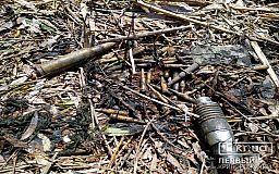 В Кривом Роге возле заброшенного профилактория нашли гранату и патроны