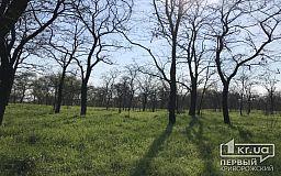 Погода в Кривом Роге и гороскоп для горожан 23 апреля