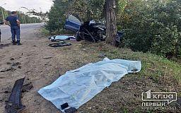 Свидетелей ДТП, в котором погибли трое криворожан, полиция просит откликнуться