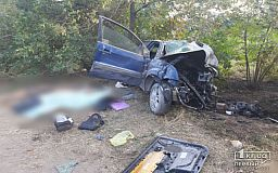 Участник смертельного ДТП на трассе в Кривом Роге был пьян