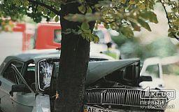В Кривом Роге водитель ГАЗ не справился с управлением и врезался в дерево