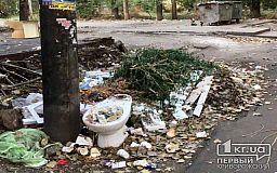 В одном из дворов Кривого Рога в 3-х метрах от мусорных баков образовалась свалка бытовых отходов