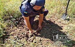 Криворожские спасатели обезвредили мину, которую мужчина нашел в поле