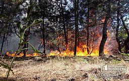 Трагедией может обернуться игнорирование пожаров на открытых территориях, - криворожские спасатели