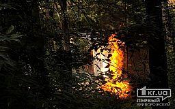 В Кривом Роге на выходных сгорели два сарая