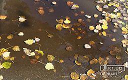 Полтысячи протоколов получили криворожане за сжигание листвы